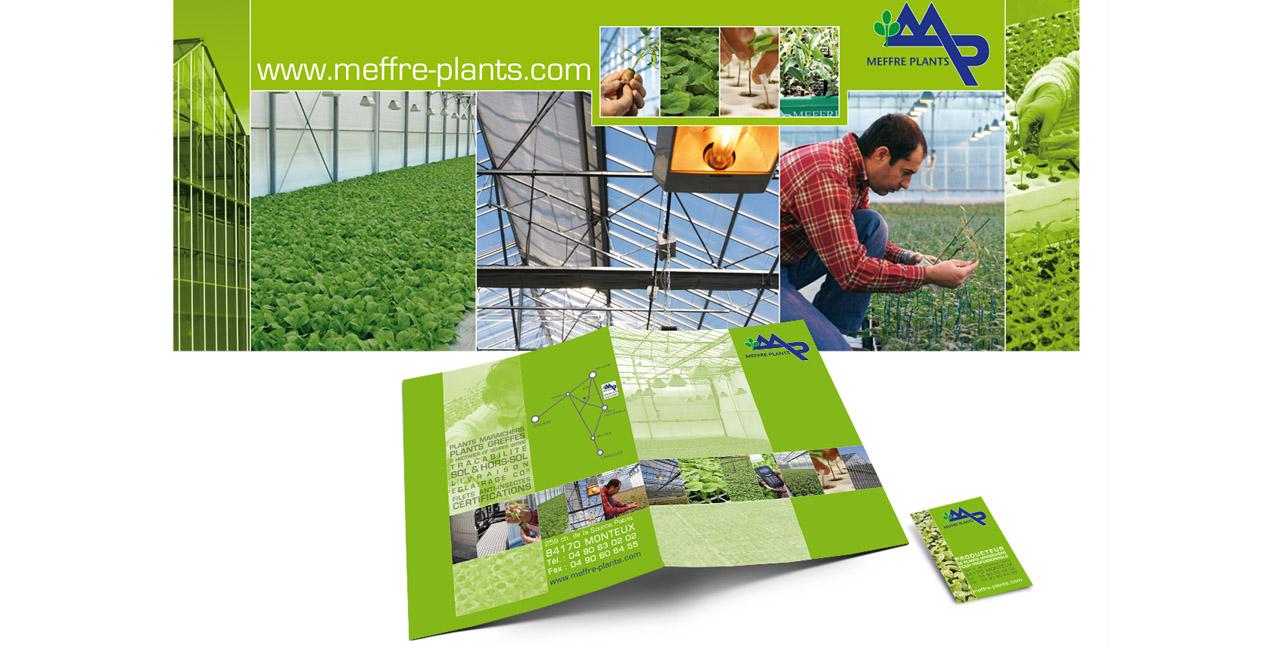 MEFFRE PLANTS